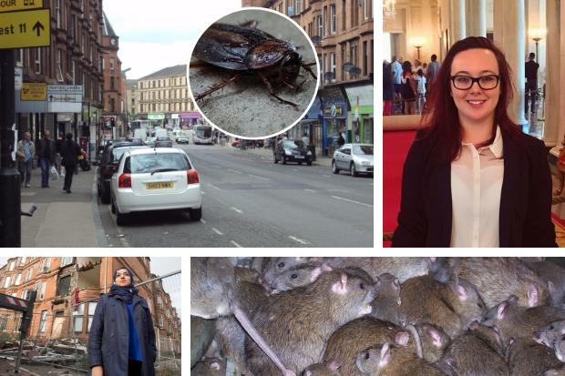 'Glaswegians deserve better': 12,000 pest control visits to homes across city