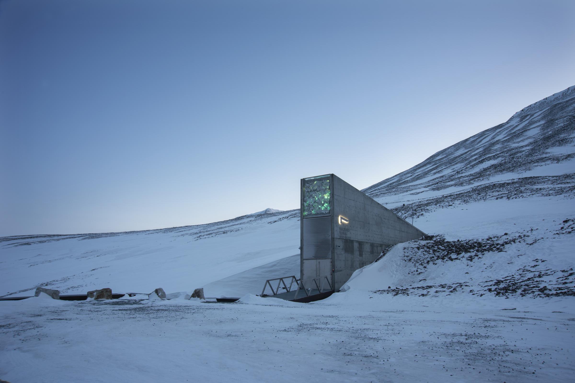 Wild Meadow Seeds From Highgrove Sent To Arctic Doomsday Vault