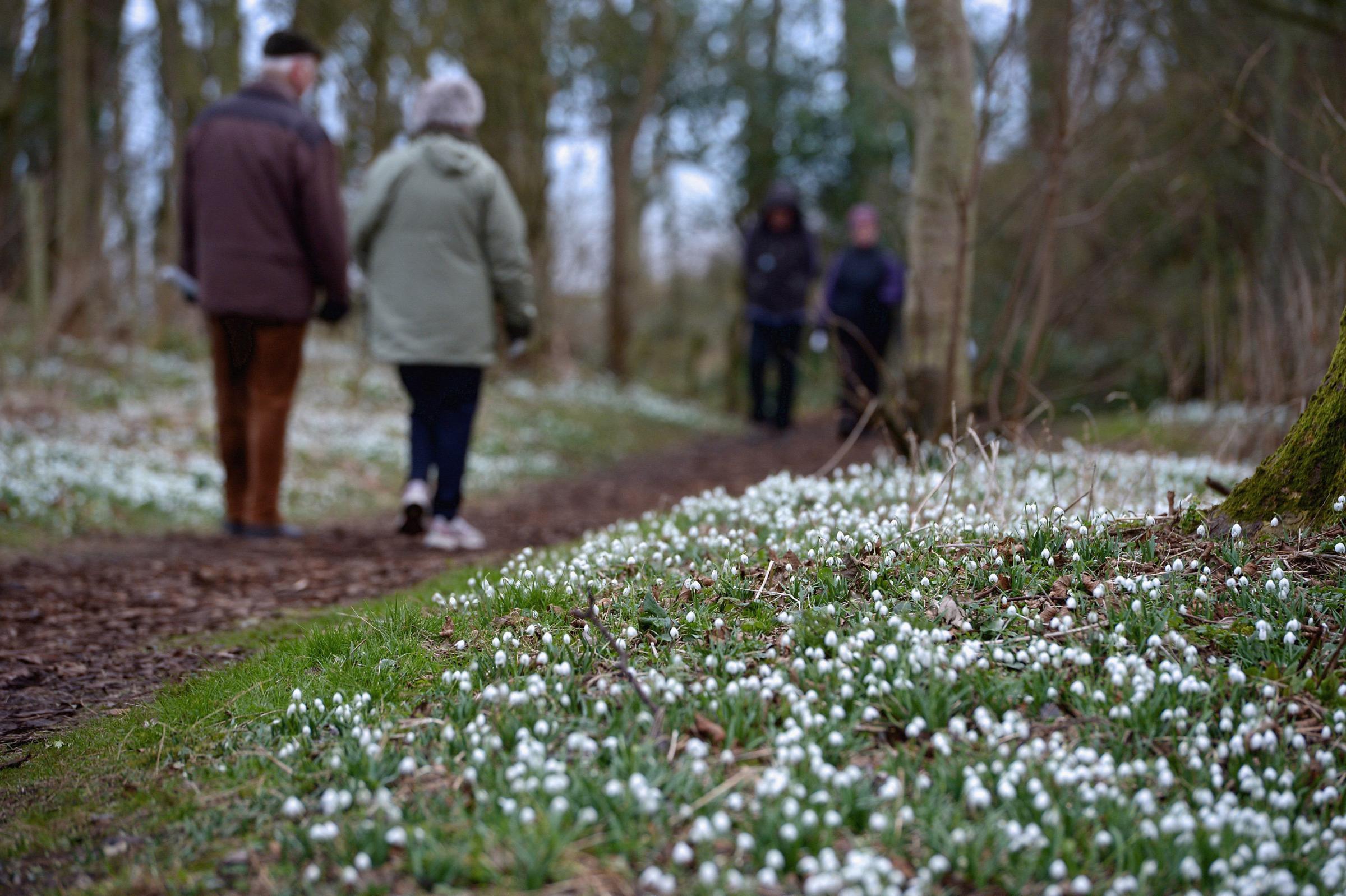 The best gardens in Scotland to visit this post-lockdown weekend
