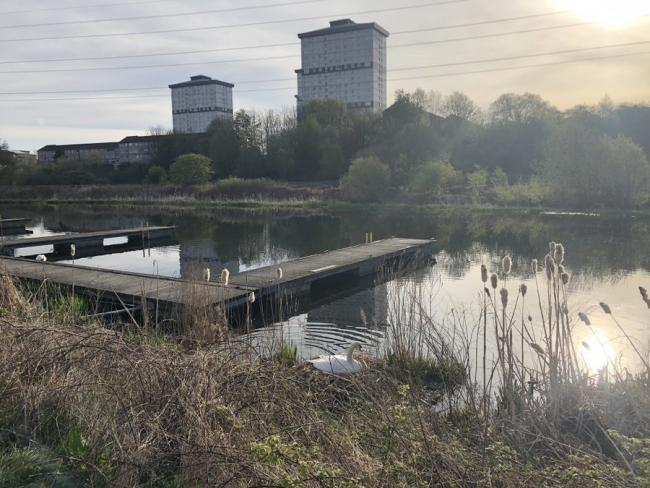 Claypits nature reserve volunteers urge anglers to look after canal after lines left