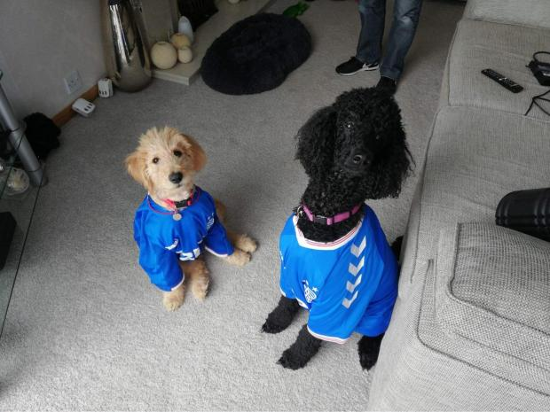 "Glasgow Times: Bailey and Kara with a ""staunch blue nose"", Elderslie"