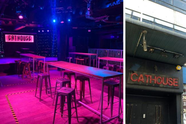 'Killing the city': Cathouse boss hits out as club is omitted from lifeline funding after reinventing as bar