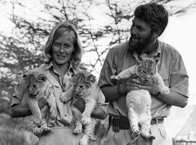Virginia McKenna in Born Free, 1966, with Bill Travers