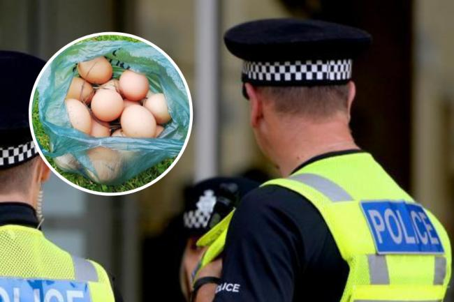 Boy, 12, charged after allegedly egging at elderly woman