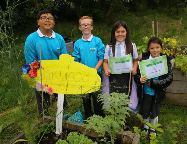 Glasgow Times: Streets forward feature on Lockheed community allotment at Glasgow's Easter House.  Pictured are Oakwood's primary students, from left - John, Logan, Shande and Erlene.  He is holding his RHS School Gardening Awards Level One Certificate.