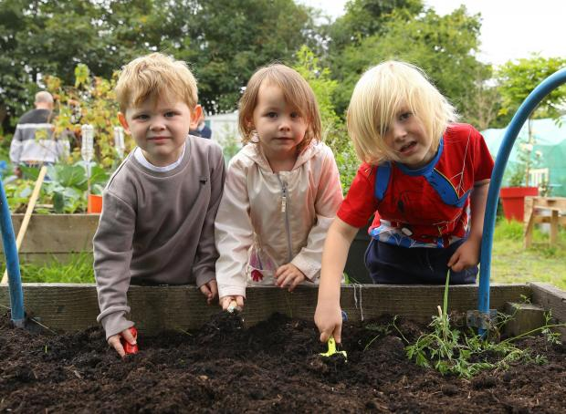 Glasgow Times: Streets forward feature on Lockheed community allotment at Glasgow's Easter House.  Pictured are the children of Lochview Nursery taking care of their raised bed.  From left - Ruaridh, Aleeya and Laughlin..Photograph by Colin Mearns.13 September 2021.  For GT,