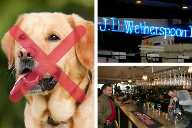 Wetherspoons bans dogs from ALL of its pubs