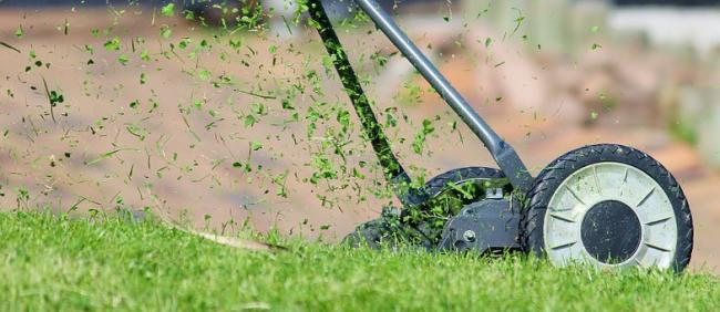 8 Best Lawnmowers on the market. credit: Pixabay