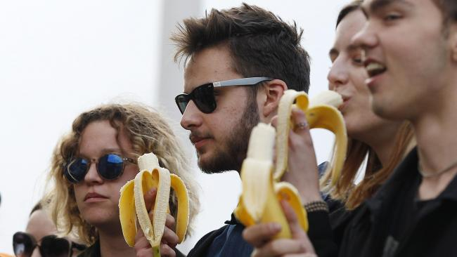 Ban on banana-eating artwork draws ridicule in Poland